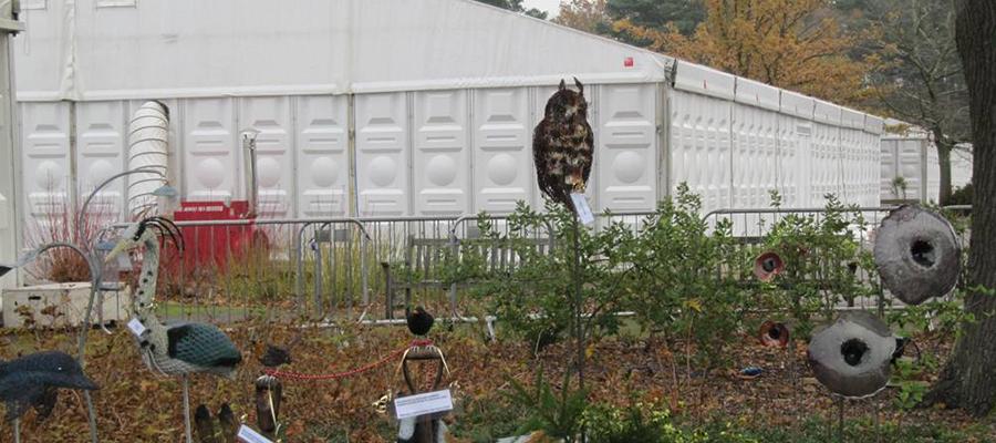 RHS Wisley Garden Craft in Focus