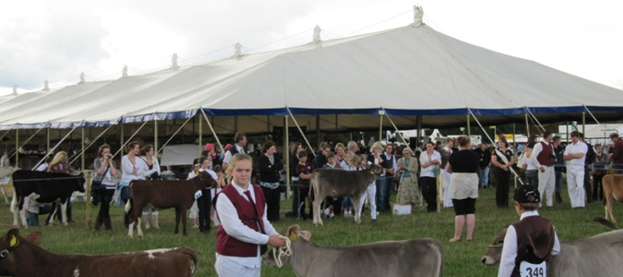 The Nantwich Show