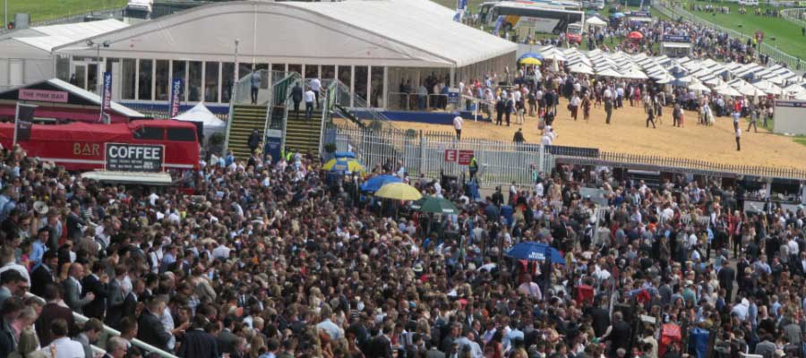 Show Festival Event Structure Bar Horse Racing