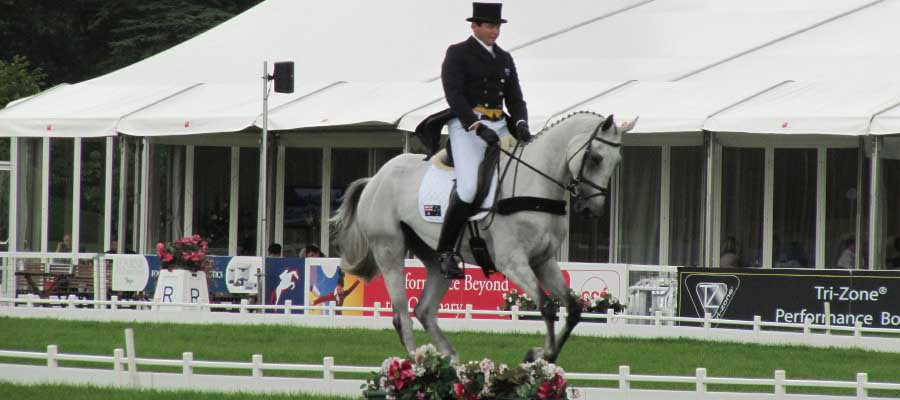 Horse Racing and Equestrian Event Structure